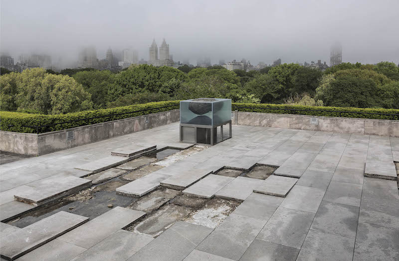 3. Installation view of The Roof Garden Commission Pierre Huyghe at The Metropolitan Museum of Art, 2015