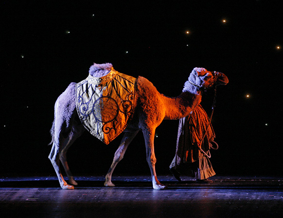 The Living Nativity animals in the Radio City Christmas Spectacu